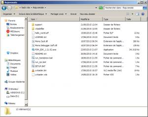 Screenshot du dossier qui doit contenir les fichiers de l'archive Rejuvenate ainsi que l'exe du PSM SDK