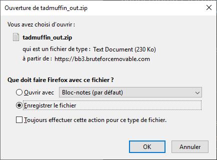 On télécharge l'archive «tadmuffin_out.zip» générée
